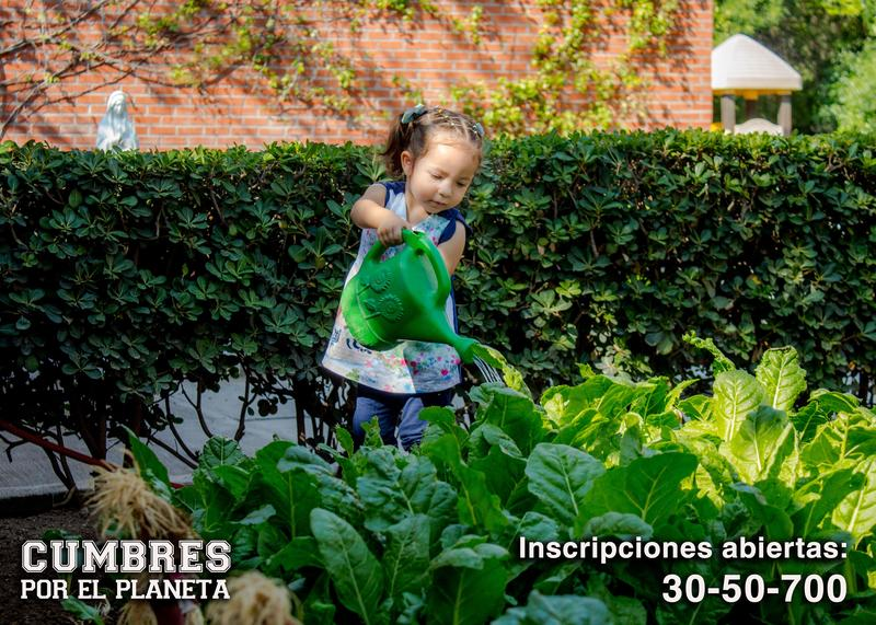 El Instituto Cumbres Saltillo fortalece la cultura ecológica y conciencia de cuidar el planeta. Featured Photo