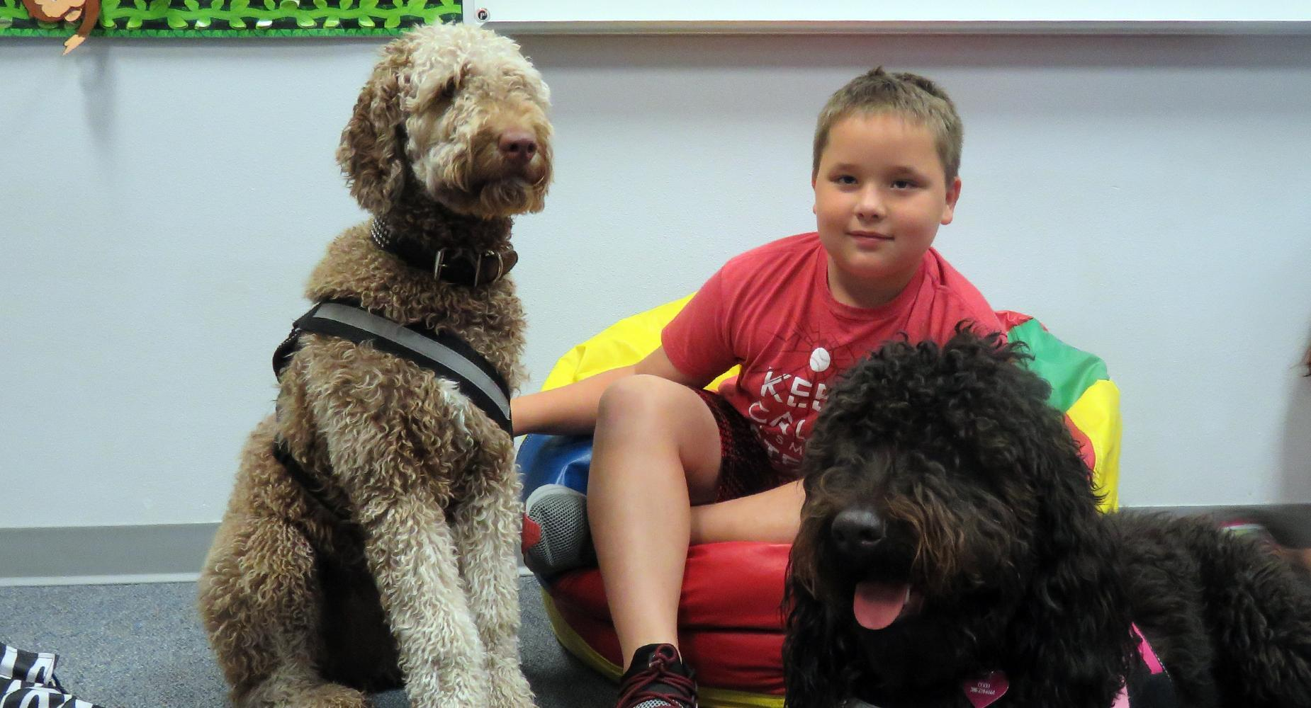 Boy in red shirt in beanbag chair, holding onto two service dogs.