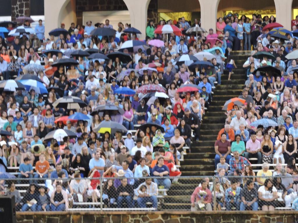 crowd with umbrellas