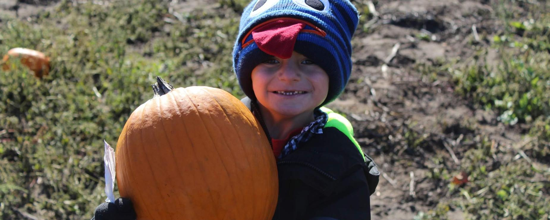 Young boy holding a pumpkin at the pumpkin patch.