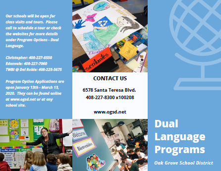 Dual Language Visual