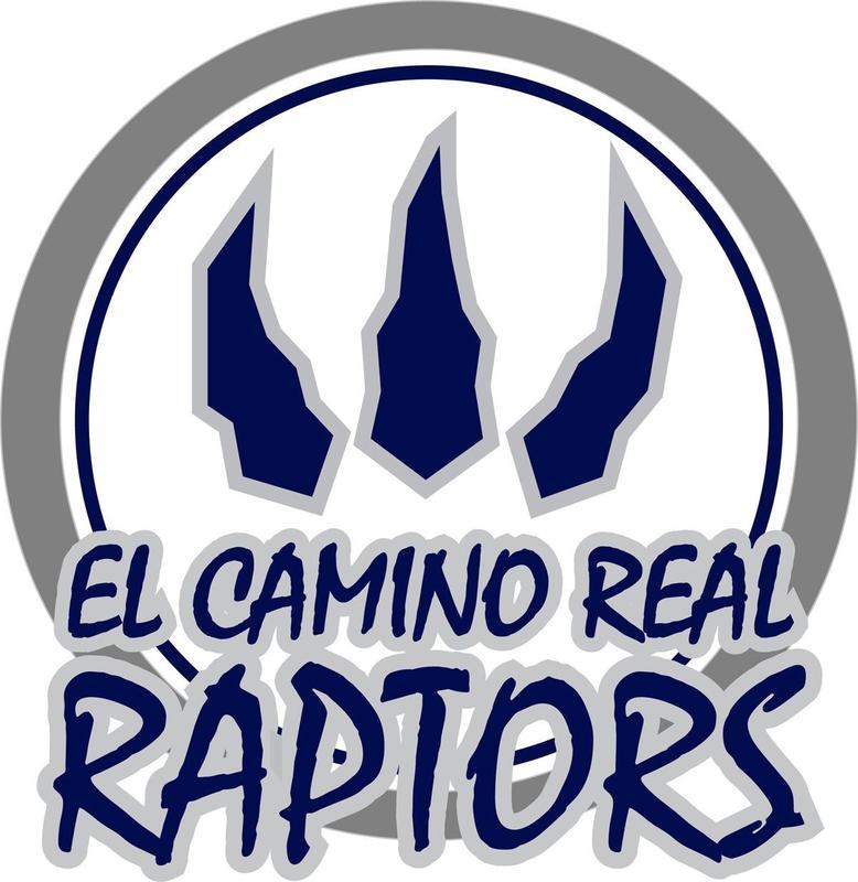 School Logo (Raptors)