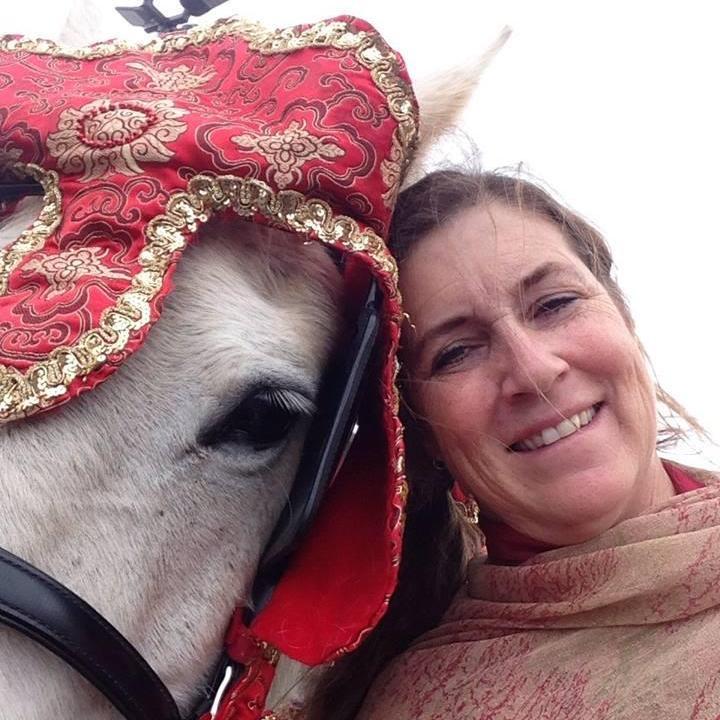 Anne Murray's Profile Photo