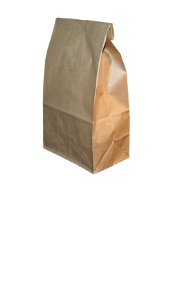 picture of brown lunch bag
