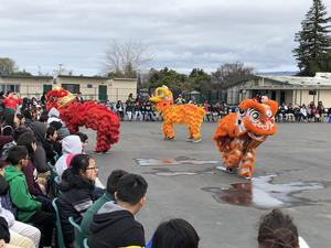 The lions interact with the Lairon crowd during its dance.