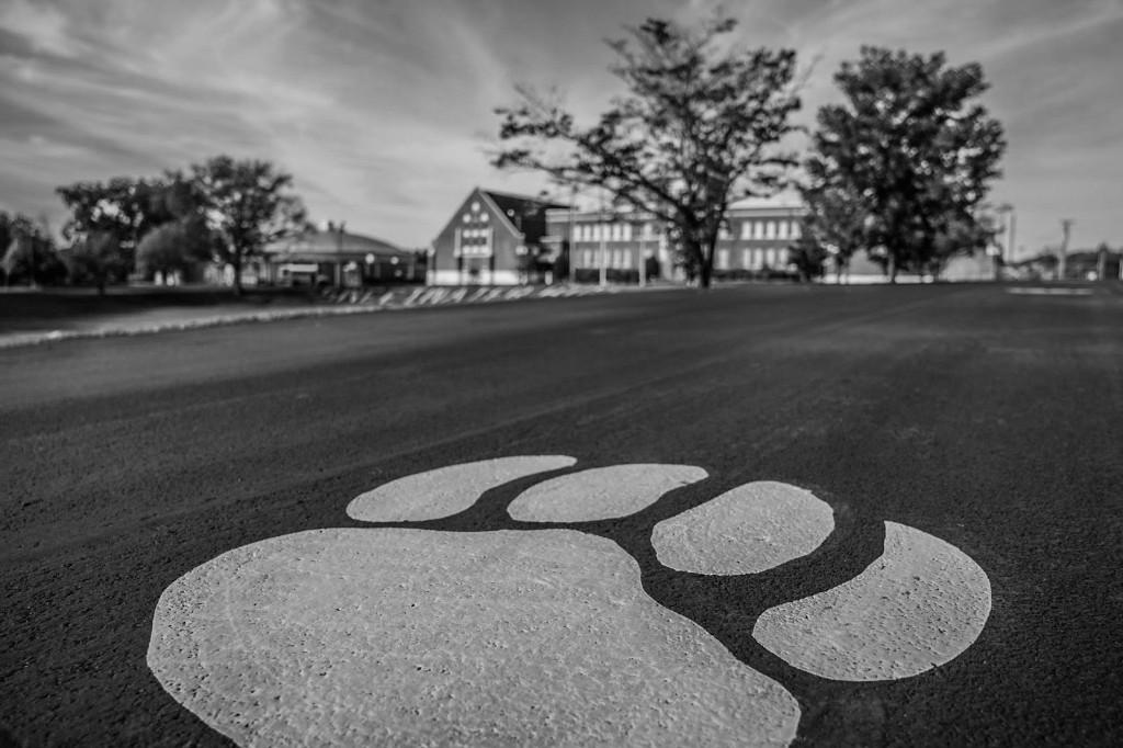 Front of Main Building Driveway Cat Paw and Letters