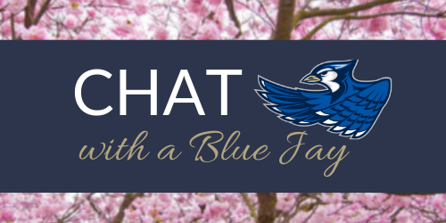 chat-with-a-blue-jay