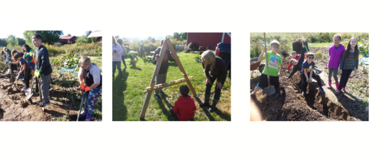 pictures of 6th grade students weeding, digging, and planting