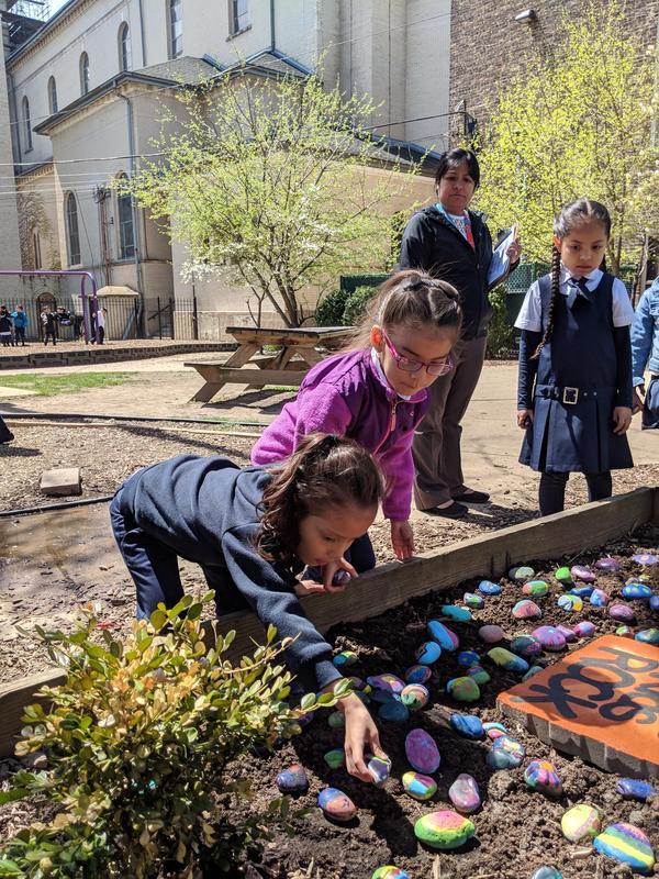 Kindergarten students placing their rock in the Casas Rock Garden.