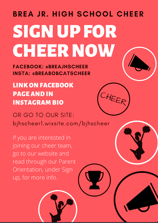 Cheer Informational Flyer