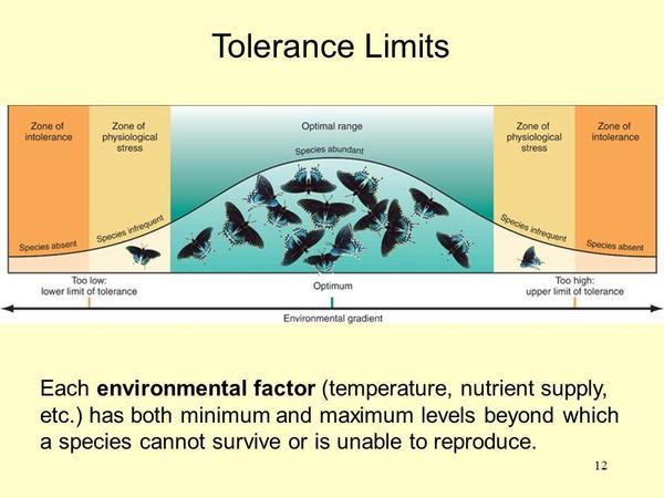 tolerance curve.jpg