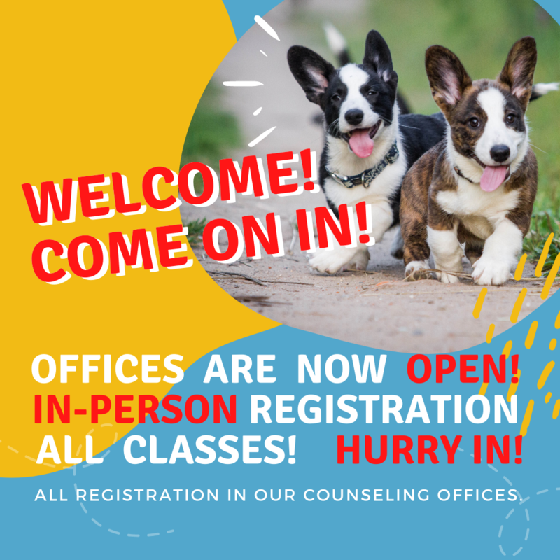 Two puppies running to announce Open Office Registration.