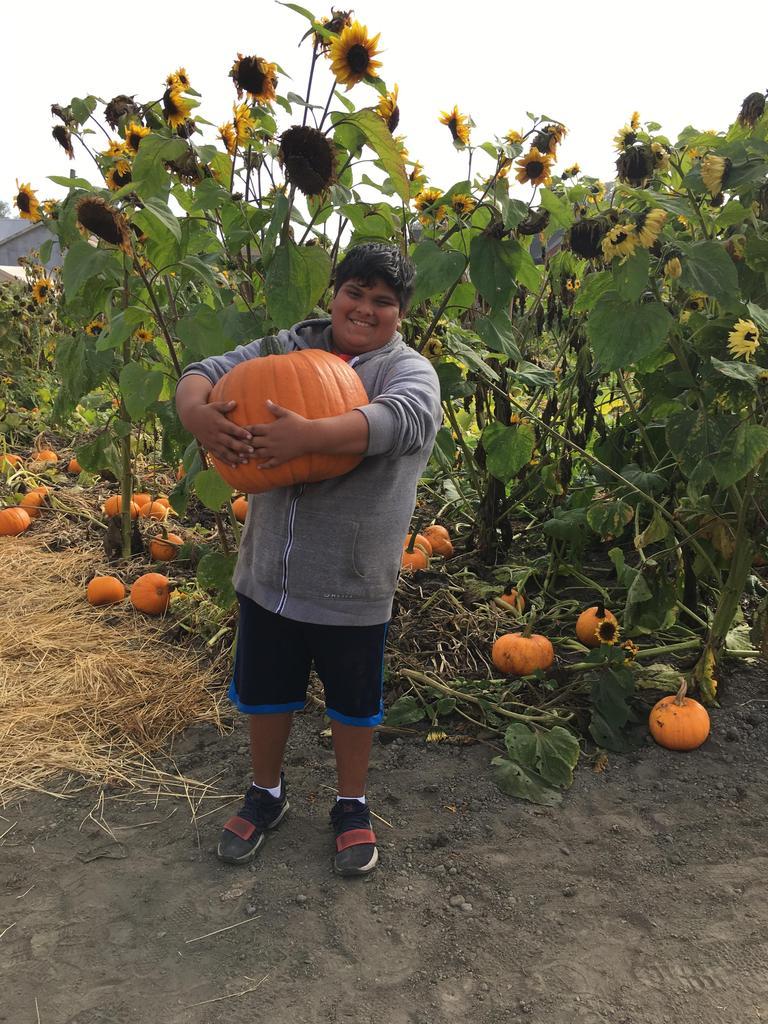 Boy holding giant pumpkin