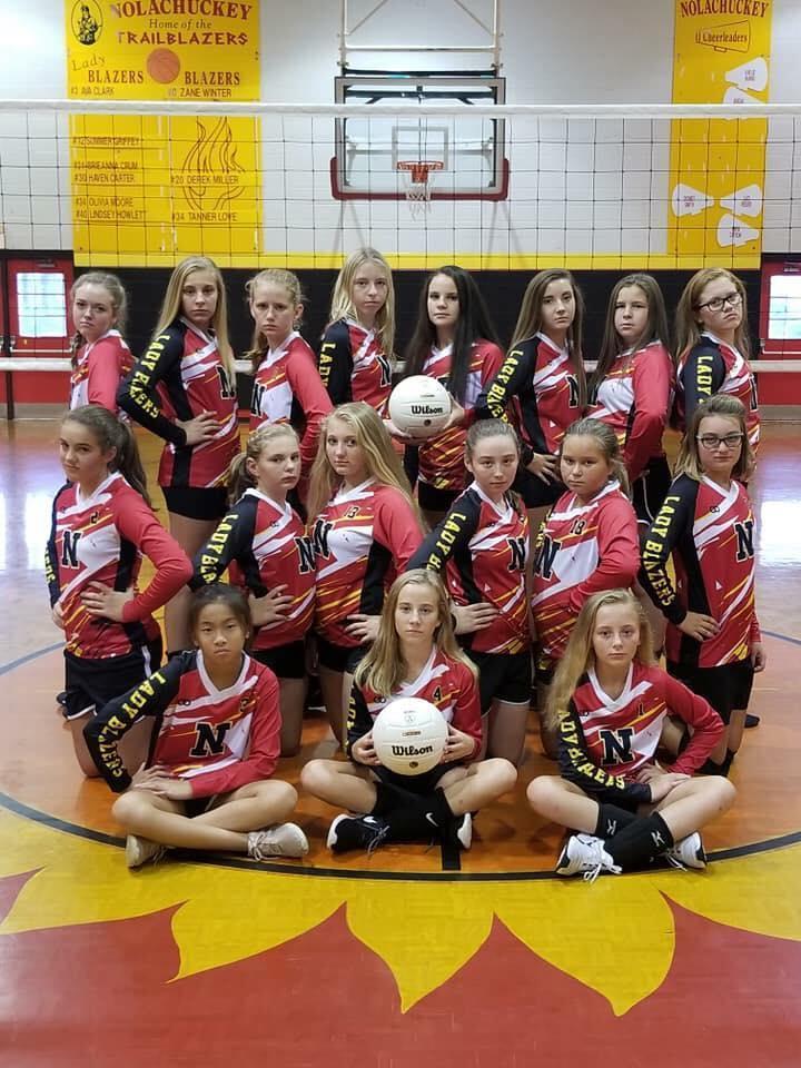 Photo of Nolachuckey Volleyball Team
