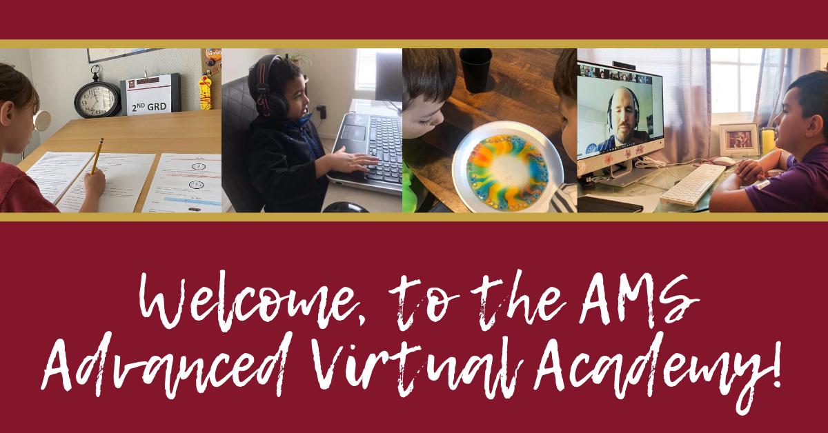 AMS-AVA-Virtual-Academy