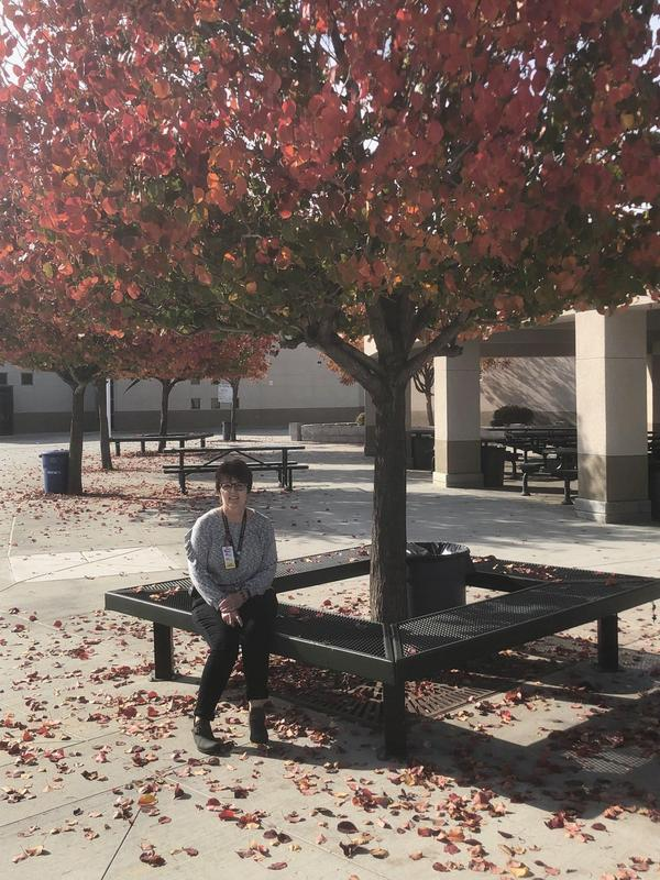 Denise Lourenco sitting on a bench under a tree.