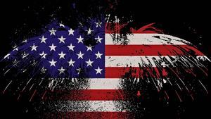 USA party.jpg
