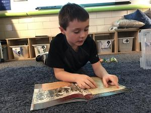Parker Sylvestre is engaged in reading.