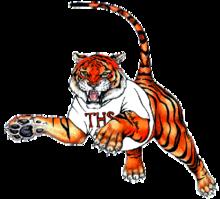 Taunton High Tiger