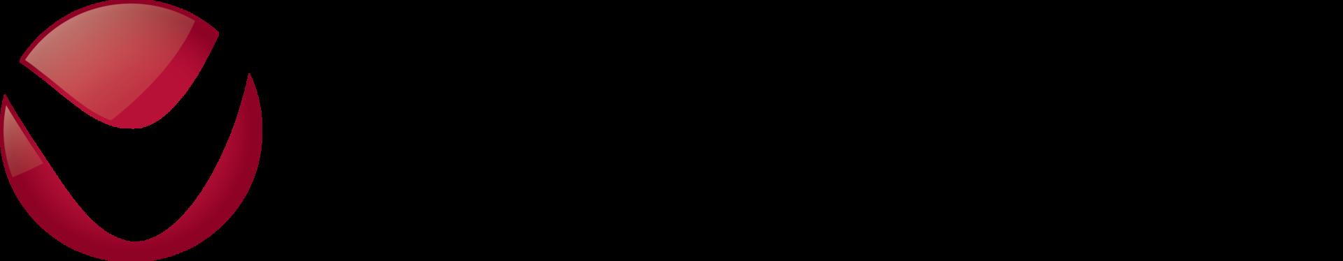 Virsage logo