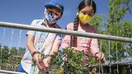 BCSD in the News: Stiern Students Attend Edible Schoolyard Kern County Featured Photo