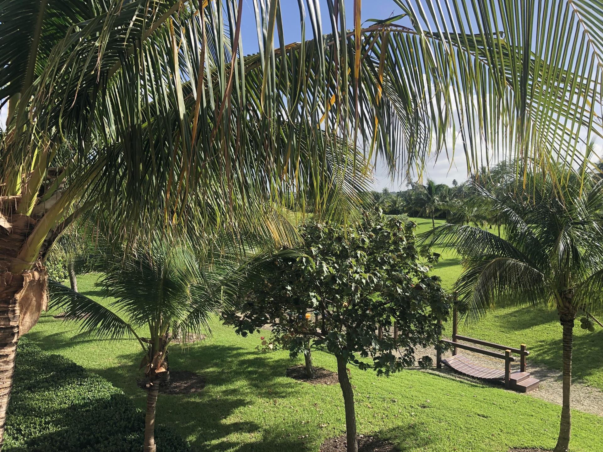 Photo of Paradise Island