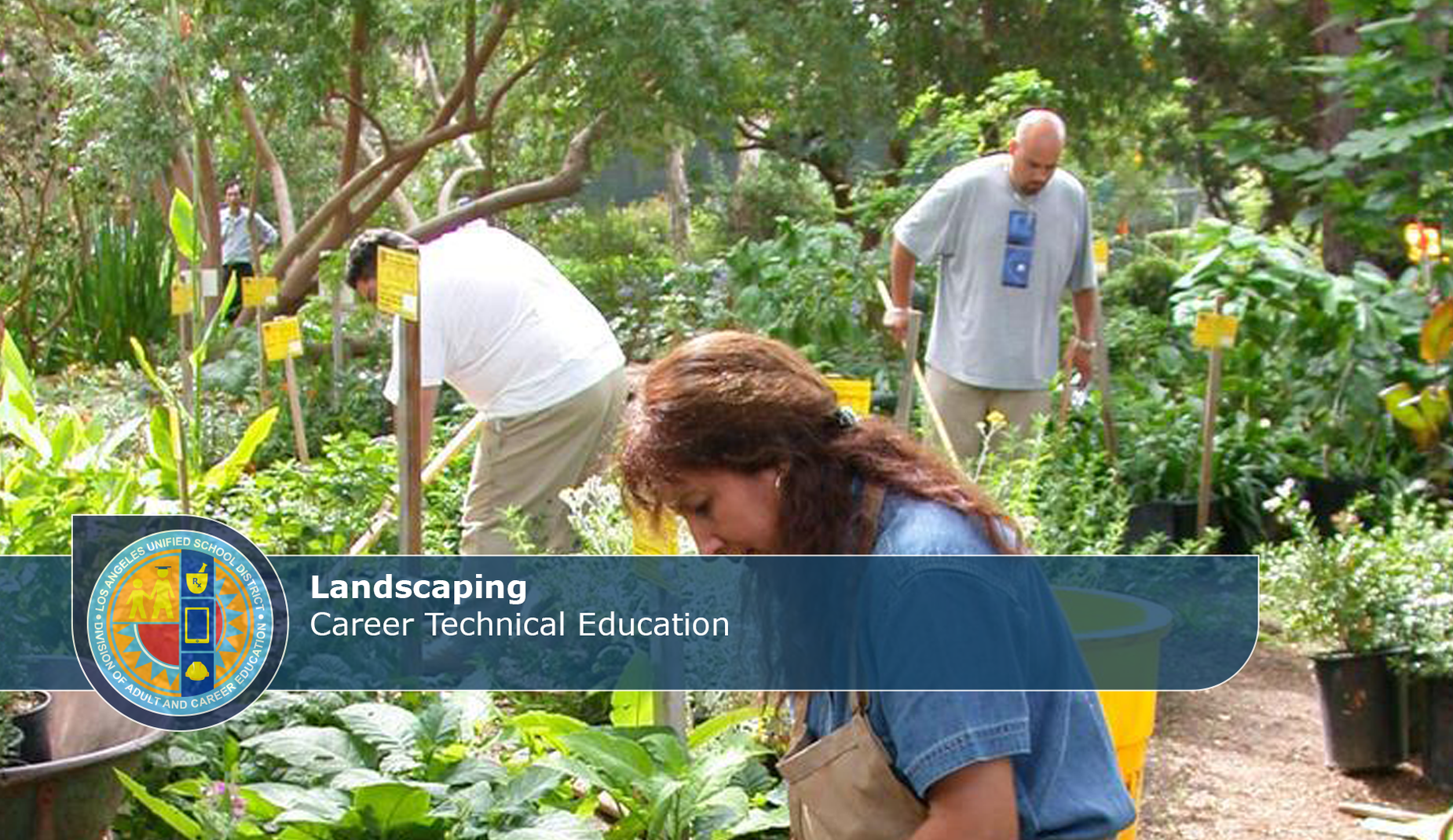 CTE Landscaping