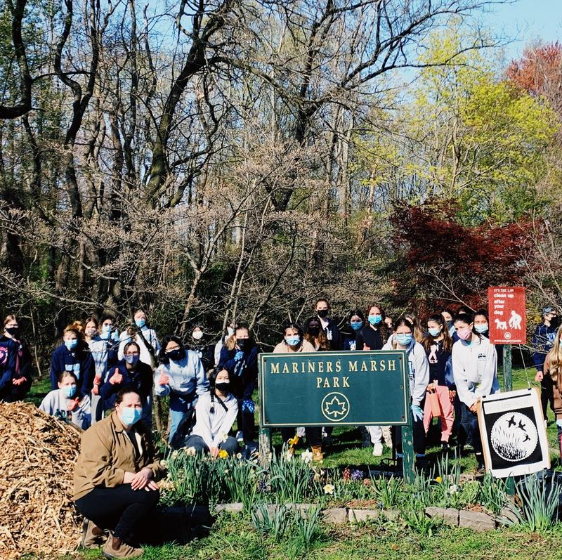 Mariner's Marsh Park Restoration Project Featured Photo