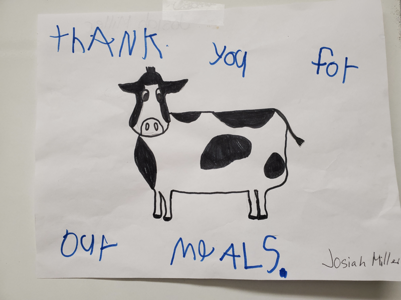 Picture of a cow, student thanking for meals