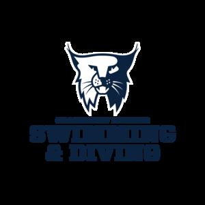 Swimming diving logo