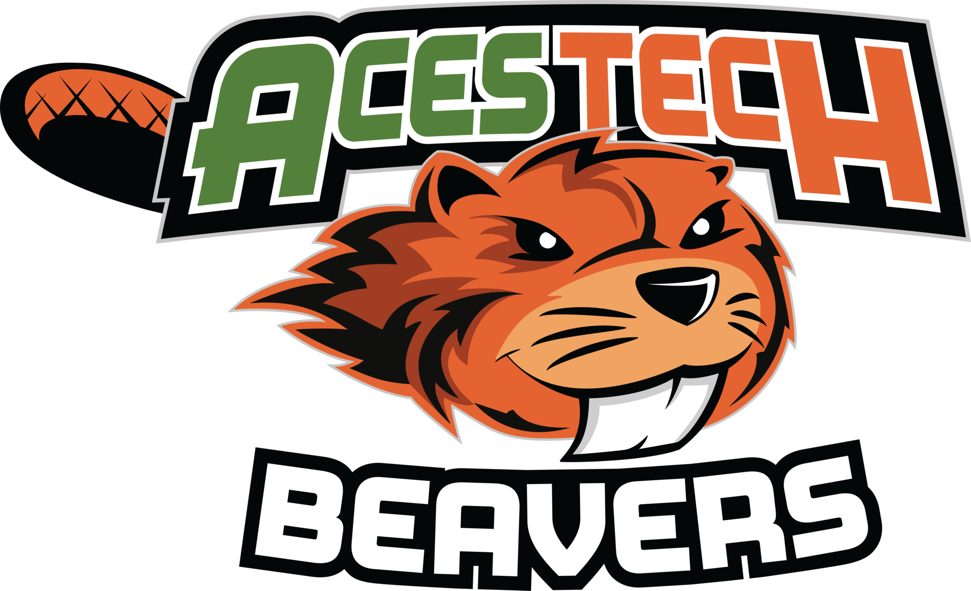 ACES Tech Beaver logo
