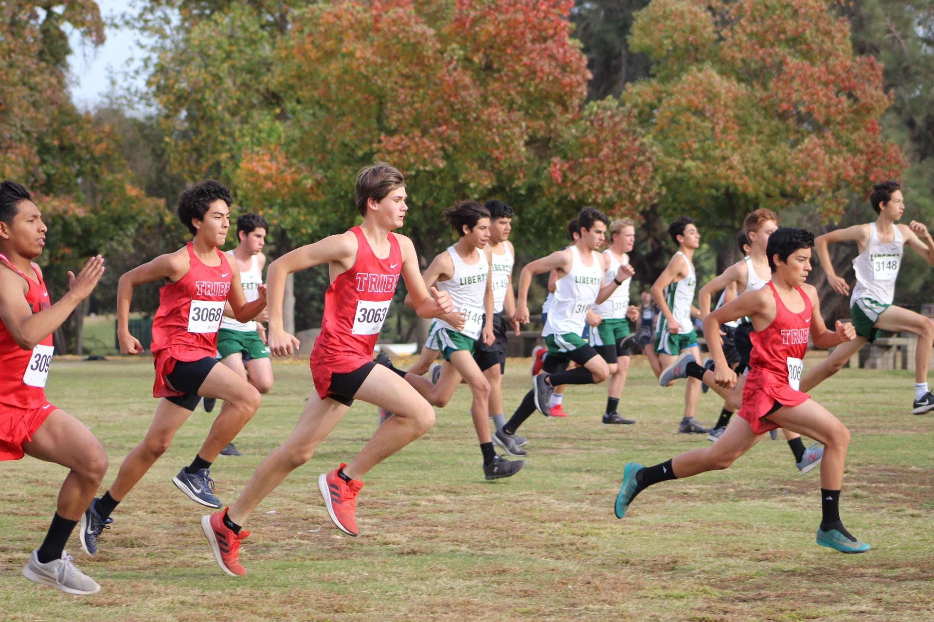 Junior Varsity Cross Country team starting
