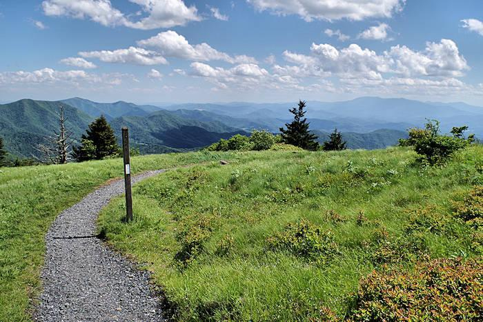 A picture of the Appalachian Trail.