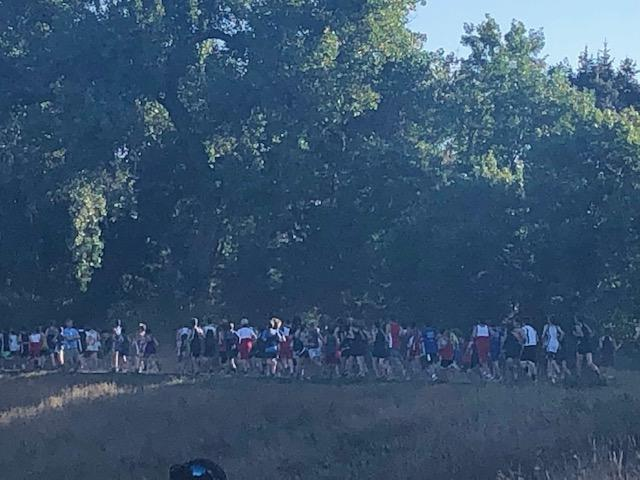 large group in cross country race