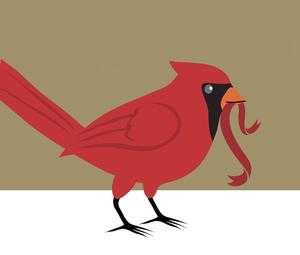 Cardinal with ribbon