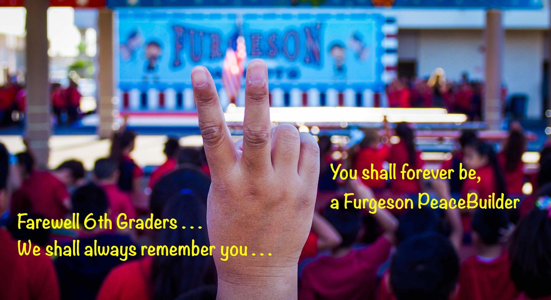Furgeson PeaceBuilder
