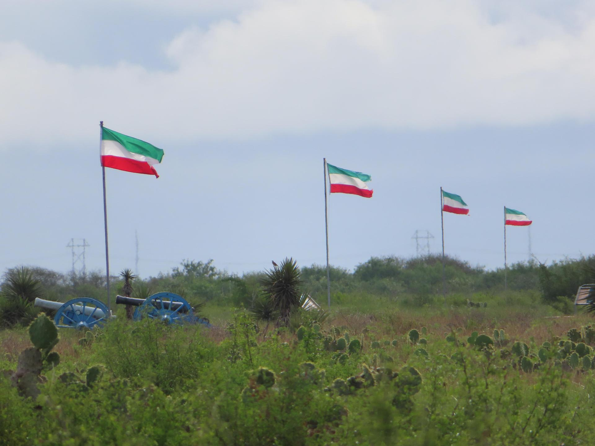 Flags and cannons on grassland
