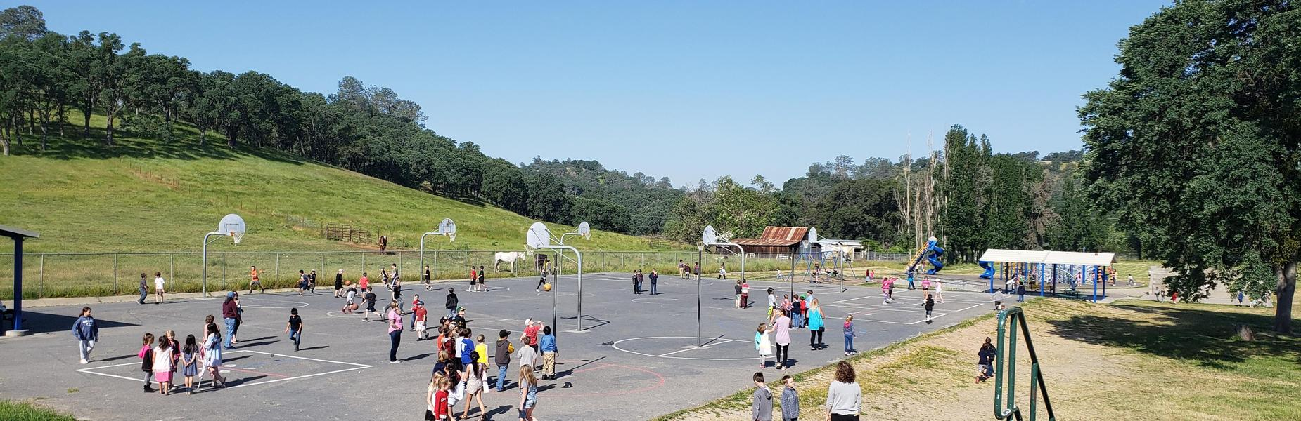 Jenny Lind Elementary Playground