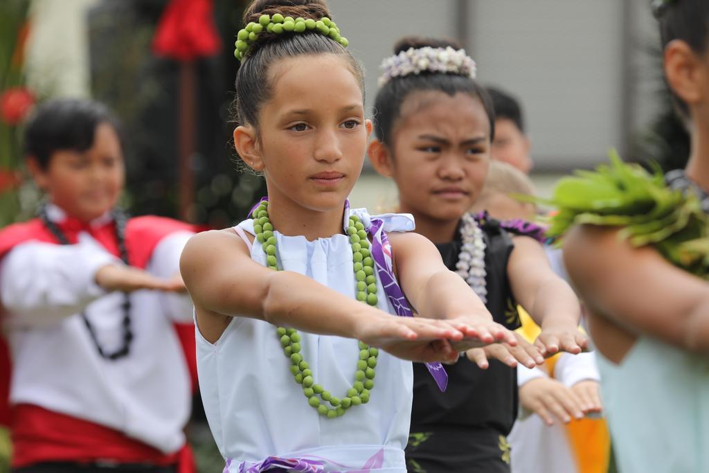 may day court dancing hula