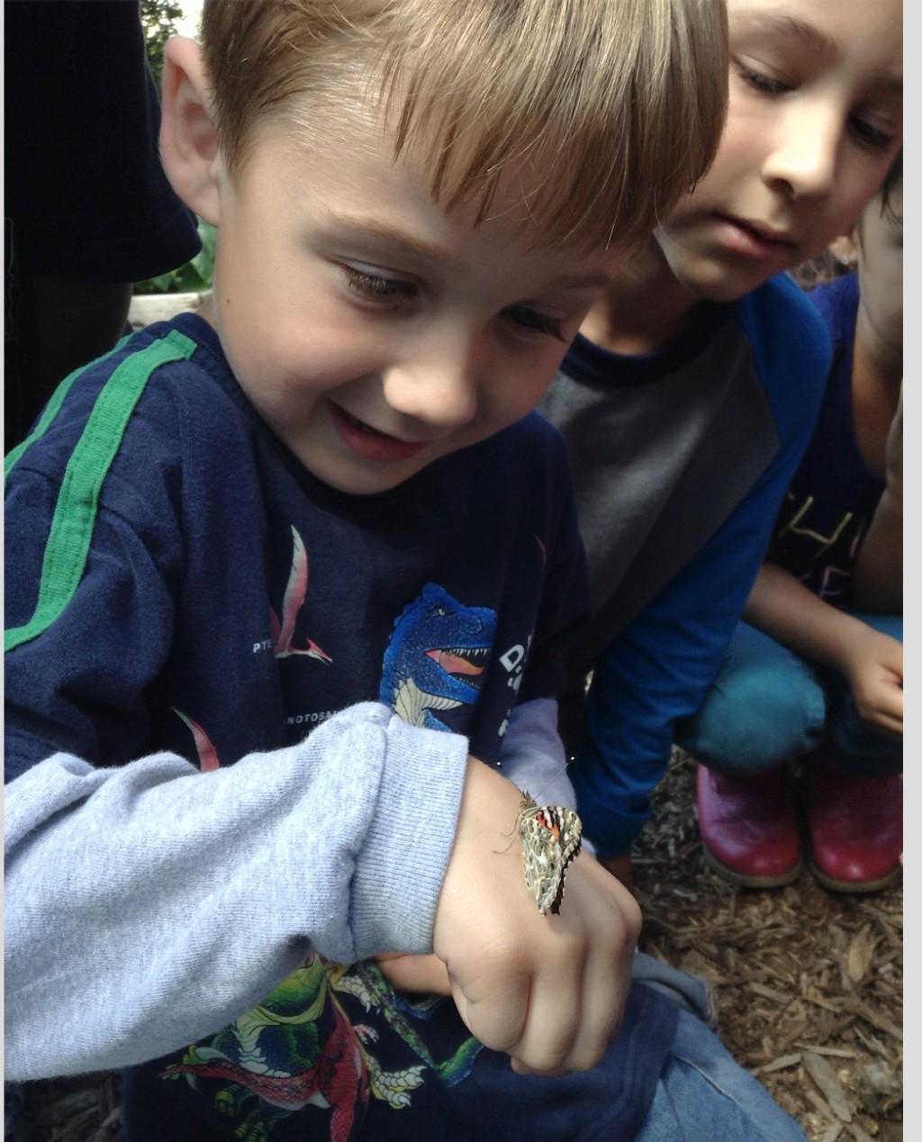Science: Student enjoying butterflies