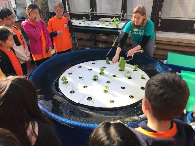 students gathered around round hydroponic table