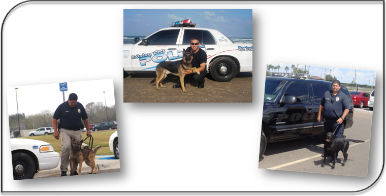 Image of Jake, Robby & Blossom with K-9 Officers