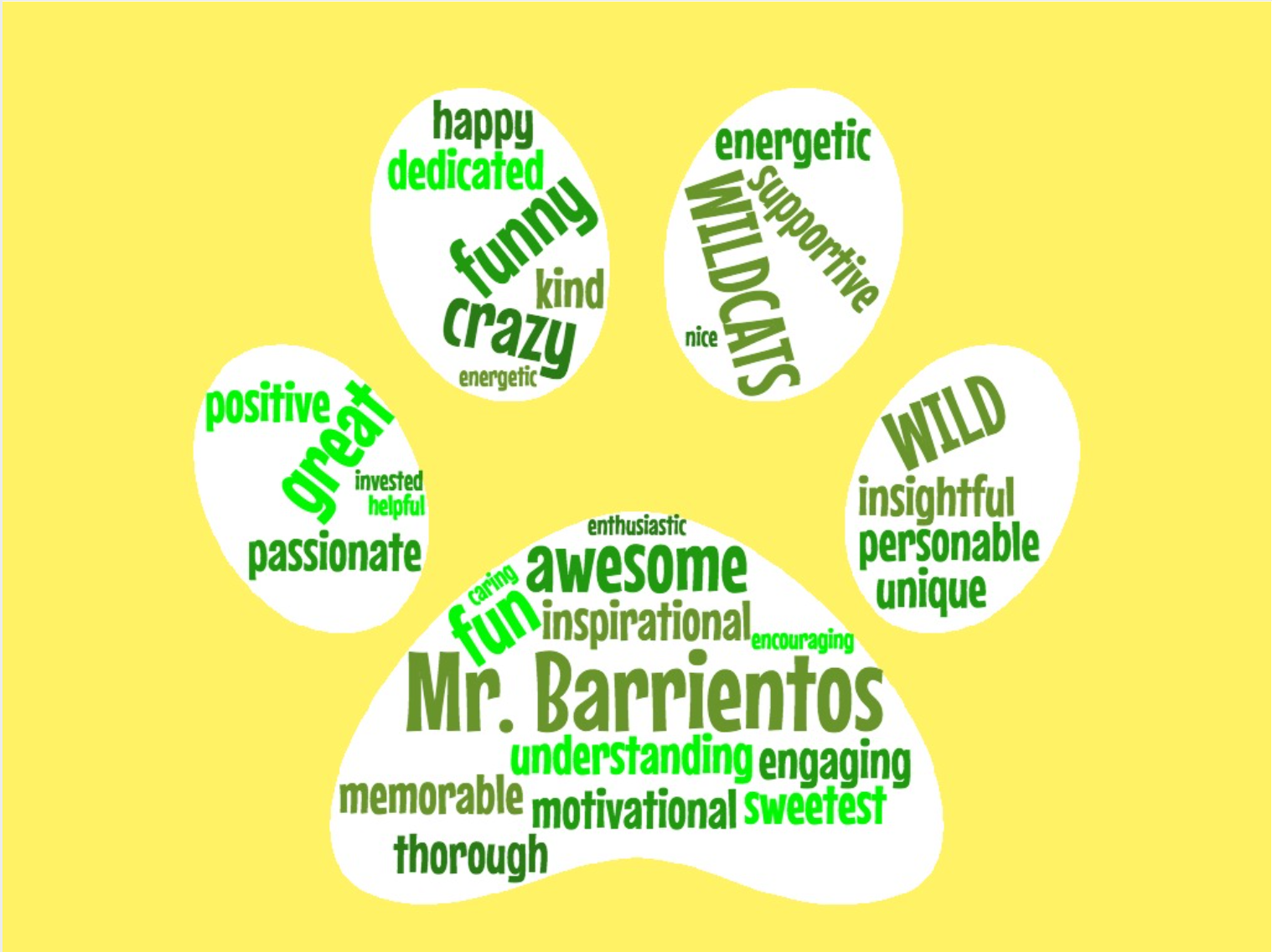 Wildcat Paw of Mr. Barrientos