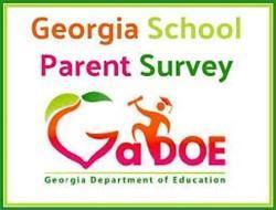 GaDOE survey