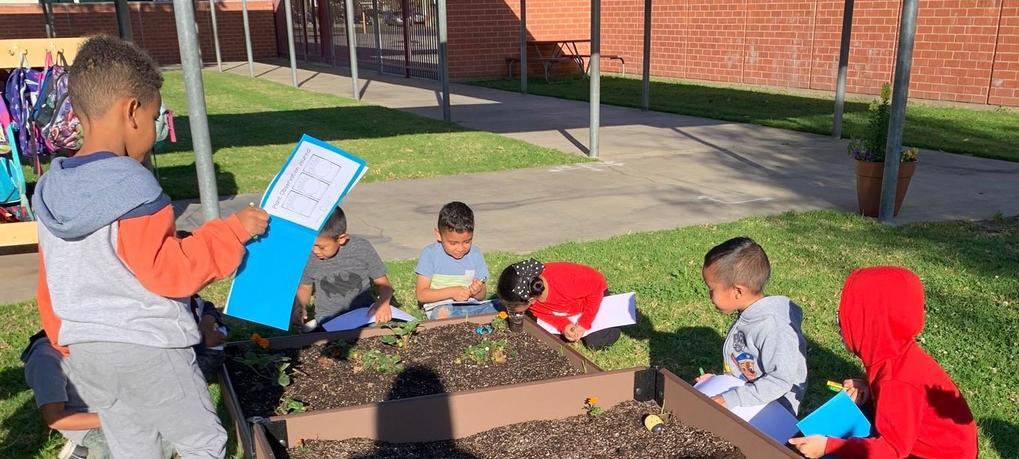 Kindergarteners charting data on their garden