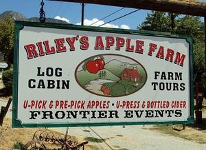 Riley's Apple Farm.jpg