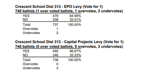 levy results