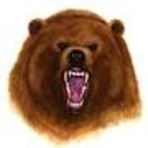 Joshua Bonas's Profile Photo