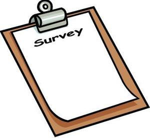 picture of a survey