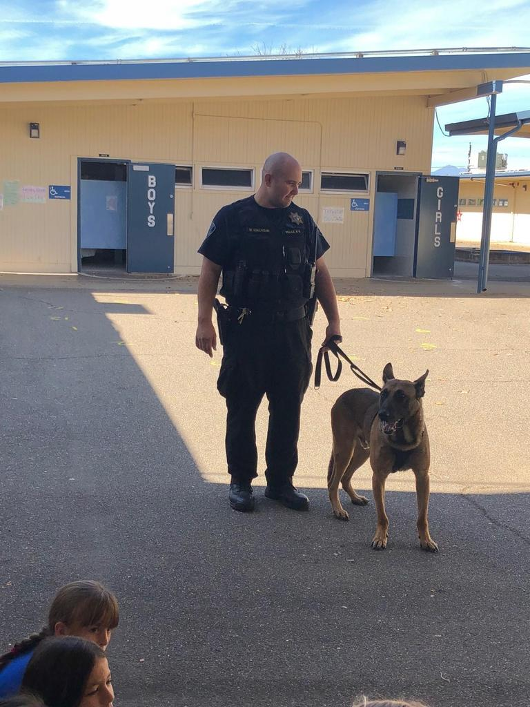 Anderson Police Officer with dog Aero